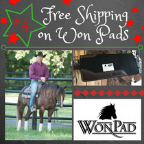 "#4 of 12 days of Christmas Special ""(WonPad + Free Shipping)"