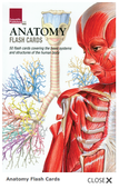 Anatomy Flash Card Set