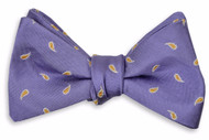 High Cotton Cooper Bowtie - Purple