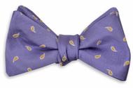 High Cotton Cooper Bowtie - Purple