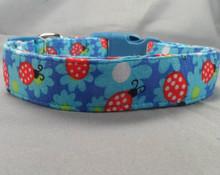 Blue Flowers and Ladybugs Dog Collar