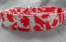 Canadian Flag Dog Collar
