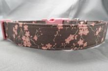 Pink Dogwood Blossoms on Gray Dog Collar