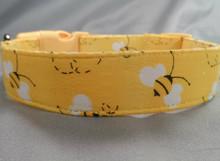 Bumble Bees on Yellow Dog Collar