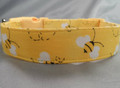 Bumble Bees on Yellow Dog Collar