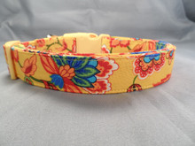 Dog Days Country French Yellow Paisley Collar