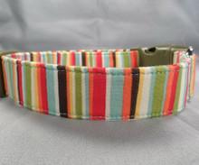 Dog Days Colorful Stripe No. IV Collar