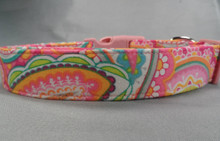 Spring Paisley Dog Collar