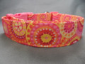 Colorful Calypso Summer Girl Dog Collar rescue me dog collar