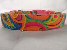 Dog Days Colorful  Pink and Orange Paisley Dog Collar