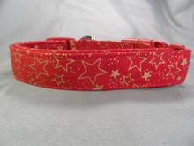 Gold Stars on Red Dog Collar