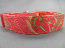 Tangerine and Pink Paisley Dog Collar rescue me dog collar