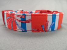Fireworks  Stripe July 4th Patriotic Dog Collar rescue Me dog collar