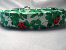 St Patrick's Dog Collar Green Shamrocks and Ladybugs Rescue Me Dog Collar