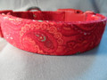 Red Paisley Dog Collar