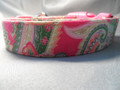 Hot Pink Paisley Dog Collar