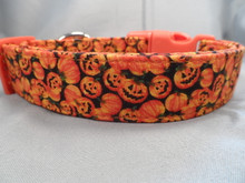 Halloween Dog Collar Little Pumpkins and Jack O Lanterns Rescue Me Collars