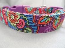 Paisley Dog Collar, Crazy Daisy Purple Paisley Dog Collar for Girls Rescue Me Collar