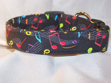 Colorful Musical Notes on Black Dog Collar