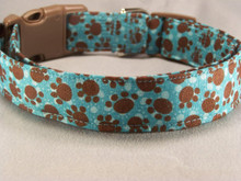 Brown Paw Prints on Turquoise Blue Dog Collar