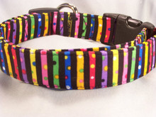 Cool Dots and Stripes on Black Colorful Dog Collar