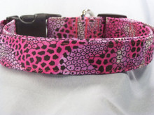 Cool Pink & Purple Snake Skin Print Dog Collar