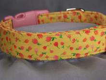 Pretty Pink Tulips on Yellow Dog Collar