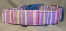 Preppy Blue & Purple Stripes Dog Collar