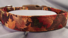 Autumn Maple Leaves Dog Collar  Rescue Me Collars