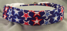 4th of July Stars Dog Collar