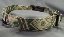 Big Bucks Money Dog Collar