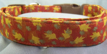 Autumn Oak Leaves Dog Collar