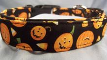 Little Pumpkin Faces on Black Halloween Dog Collar