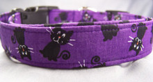 Black Cats on Purple Halloween Dog Collar