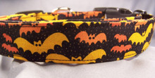 Orange Bats on Black Halloween Dog Collar Rescue Me Collars