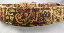 Paisley Dog Collar Gold on Dark Brown