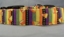 Candy Corn on Colorful Stripes Halloween Dog Collar