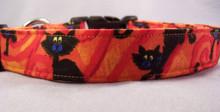Black Cats on Orange Halloween Dog Collar