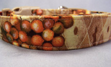 Fall Grapes Dog Collar