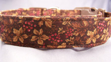 Fall Wine Grapes and Leaves on Brown Dog Collar