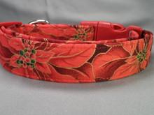 Bright Red Poinsettias Christmas Dog Collar