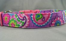 Groovy Purple Paisley Dog Collar