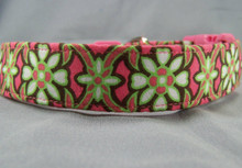 Chocolate and Lime Scroll on Pink Dog Collar