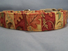 Autumn Leaf Stripe Dog Collar