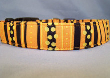 Halloween Stripe Dog Collar Rescue Me Collar