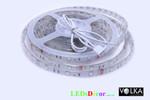 SMD 5050 60 pcs/m Waterproof IP68
