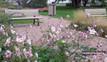 Da Vinci Bench - Park