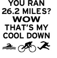 Wall Decals and Stickers -- You ran 26.2 miles..