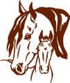 Wall Decals and Stickers –  Horse Design-