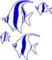 Wall Decals and Stickers –  Fish'*